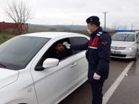SERVİS ARACI - Balıkesir'de Jandarmadan Korona Virüs Denetimi