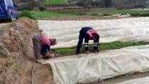 Tarlada Çalışan Kadına Jandarma Yardım Etti