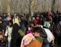 SıĞıNMA - Bakan Soylu: Yunanistan'a geçenlerin sayısı 143 bini geçti