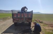 Mazıdağı'nda Muhtar Kendi İmkanlarıyla Köy Yolunu Onardı