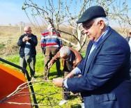 ALI YıLMAZ - 65 Yas Üstü Çiftçiler Ekim Yapabilecek