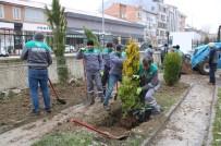 ORMAN İŞLETME MÜDÜRÜ - Kütahya Orman Bölge Müdürlüğünden Ağaçlandırma Çalışmaları