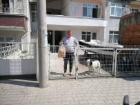 Alaçam'da Kimse Ekmeksiz Kalmadı
