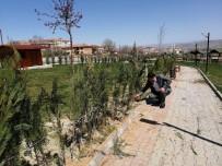 Çiçekdağı Belediyesi 10 Bin Fidanı Toprakla Buluşturmak İstiyor
