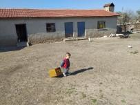 Karantina Döneminde Köydeki Çocuklar Kent Merkezlerinden Daha Şanslı