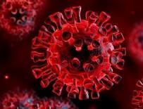 FELAKET - Corona virüsü yenen doktor anlattı...