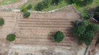 PAMUKKALE ÜNIVERSITESI - (Özel) PAÜ, BİYOM Arazisinde Hiçbir Bitkiye Zarar Vermeden Alt Yapı Çalışmasını Tamamladı