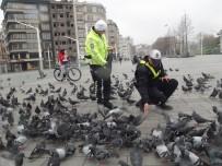 TAKSIM - (Özel)Taksim'de Aç Kalan Güvercinleri Trafik Polisleri Besledi