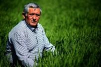 Çiftçi Bollukta Da Tanzim Satış Noktası İstiyor