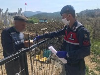 Ayvacık'ta 65 Bin 541 Kişinin Talebi Karşılandı