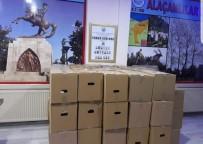 İstanbul Alaçamlılar Derneğinden 350 Yardım Kolisi