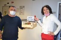 Ürettiği Çilekleri Sağlıkçılara İkram Etti
