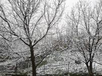 Artvin'de Nisan Ayında Kar Yağdı