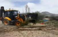 Kayserili Çiftçi 200 Kayısı Ağacını Don Vurunca Söktürdü