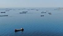 DEMIRLI - Zeytinburnu açıklarında onlarcası salgının bitmesini bekliyor