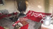 ŞEHİT AİLELERİ - Sobadan Çıkan Yangın 4 Kişilik Aileyi Evsiz Bıraktı