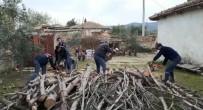 BEYTÜŞŞEBAP - Şehit Annesinin Odunlarını Jandarma Kırdı