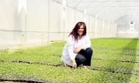 ÖZLEM ÇERÇIOĞLU - Aydın Büyükşehir Belediyesi, Gıda Sorunu Yaşanmaması İçin Harekete Geçti
