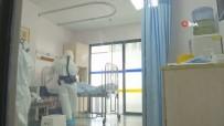 DIAMOND - Japonya'da Korona Virüsünden Ölenlerin Sayısı 104'E Yükseldi