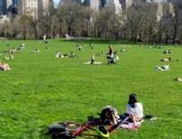 BROOKLYN - New York'ta parklar geçici mezarlık olabilir