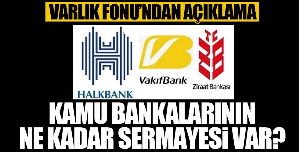 Kamu bankalarının ne kadar sermayesi var?