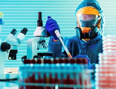 Bilim insanları ilk kez açıkladı! Koronavirüs...