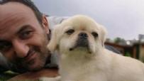 ERSİN KORKUT - Arkadaşları Ersin Korkut'a yeni köpek aldı!