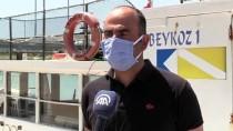 Nesli Tehlike Altında Olan Dev Vatoz Gökçeada'da Görüntülendi