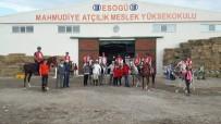 ESOGÜ Mahmudiye Atçılık Meslek Yüksekokulu'na Laboratuvar Ruhsatı