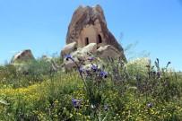 Kapadokya Bölgesinde Bahar Güzelliği Yaşanıyor