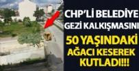 GEZİ PARKI - Bolu'da Gezi'nin yıldönümünde rezalet! Ağaç keserek kutladılar
