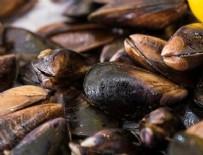 KURBAĞA - İslam'a göre midye yemek haram mıdır?