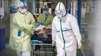 DOMUZ GRIBI - Bilim insanlarından korkutan uyarı! Corona virüs son olmayacak...