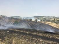 Yangında 60 Dekar Buğday Ekili Tarla Kül Oldu
