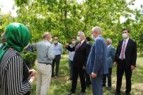 Vali Seymenoğlu, ANA FRUIT Tesislerini Ziyaret Etti