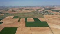 DSİ, Toplulaştırma Çalışmalarıyla Çiftçiye Güç Katıyor