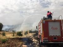 Mardin'de Ormanlık Alanda Yangın