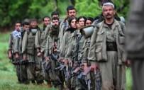 KıRıM - Alman basınından Türkiye'ye karşı skandal açıklama