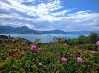 Isparta, Türkiye Kültür Portalı'nda Mayıs Ayı Birincisi