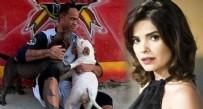 PİTBULL - Sevgilisini öldürtüp köpeklere yediren futbolcudan skandal paylaşım!