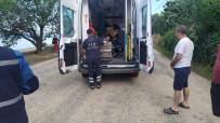 Erdek'de Pat Pat İle Trafik Kazası 1 Yaralı