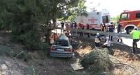 Kontrolden Çıkan Otomobil Orta Refüjdeki Ağaca Çarptı Açıklaması 3 Yaralı