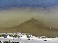 Küçükçekmece Gölü'nde Oluşan Kirlik Havadan Görüntülendi