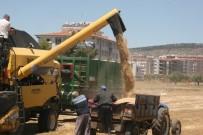 Kilis'te Hububat Hasadı Sürüyor