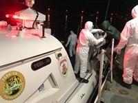 Yunanistan'ın Ölüme Terk Ettiği Göçmenleri Türk Sahil Güvenlik Kurtardı