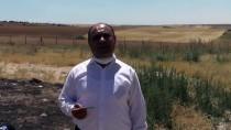 Kırşehir'de Anız Yangınlarını Önlemek İçin Muhtarlarla İş Birliği Yapılacak