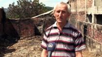 Kastamonu'da 1 Tonluk 'Tosun' 23 Bin Liradan Görücüye Çıkıyor