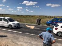 Kırklareli'de Hafif Ticari Araç Eşek Arabasına Çarptı Açıklaması 1 Ölü