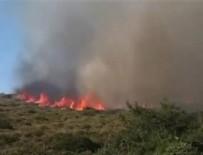 YANGINA MÜDAHALE - Alaçatı'da korkutan yangın!