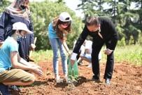Tuzla'da Gençler, Her İhtiyaç Sahibi İçin Bir Tohumu Toprakla Buluşturdu